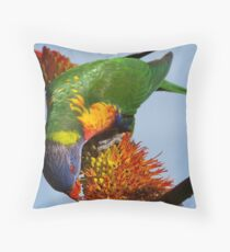 Lorikeet Luncheon Throw Pillow