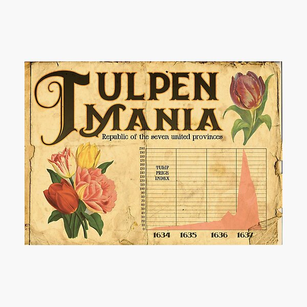 Tulpen Mania Photographic Print