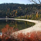 Exploring North Beach, Payette Lake by Janet Houlihan