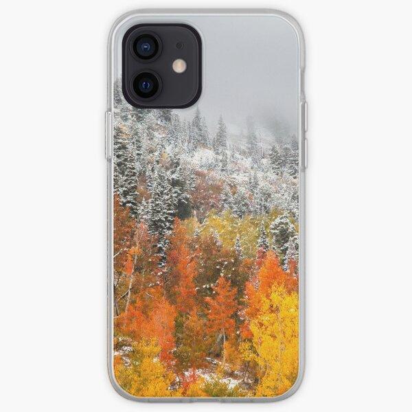 Fall to Winter, Utah, Autumn, Winter, By DAM Creative iPhone Soft Case