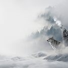 Wolves Snowscape by danbadgeruk