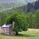 Lonely Old Hut by TomRaven