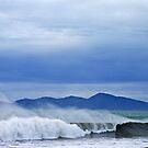 Surfs Up - Kapiti Island - New Zealand by TomRaven