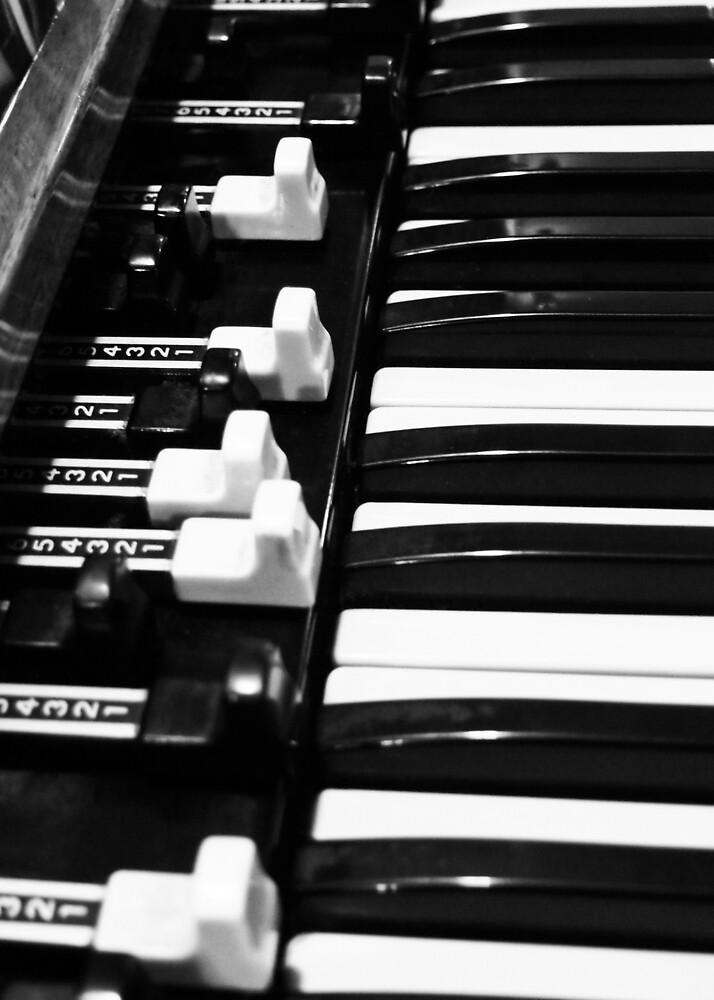 Hammond B3 Organ by Douglas E.  Welch