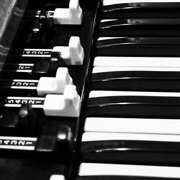 Hammond B3 Organ by douglasewelch