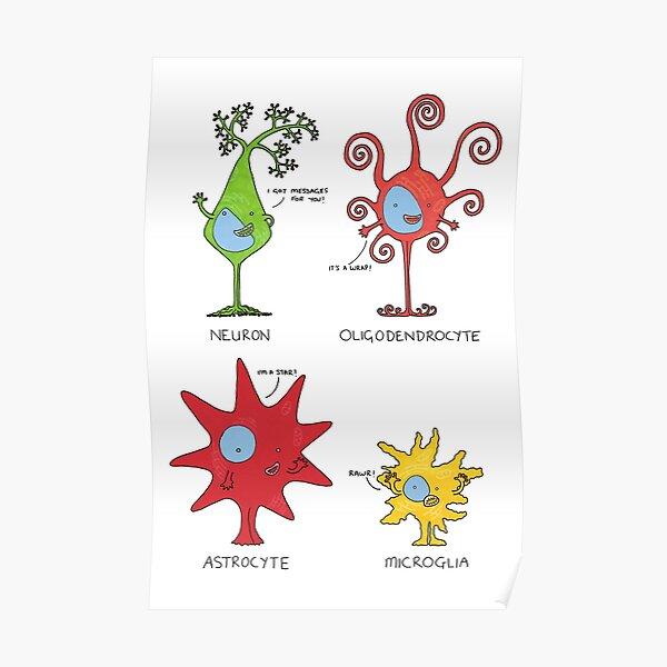 Meet your brain cells! - TALL Poster