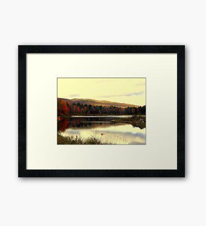 Fall At Pillsbury State Park 2, Washington, NH Framed Print