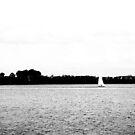 Sailing in the Park by LeonidasBratini