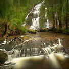 McGowans Falls, Tasmania by Kevin McGennan