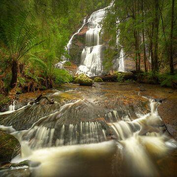 McGowans Falls, Tasmania by kevinmcgennan