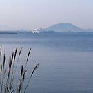 Morning light on Lake Biwa, Japan. by johnrf