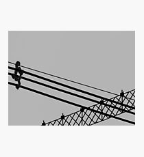 Line Study 1 Photographic Print