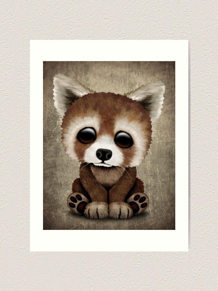 Cute Baby Red Panda Art Print By Jeffbartels Redbubble