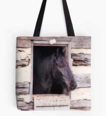Beautiful Black Horse in the Barn Tote Bag