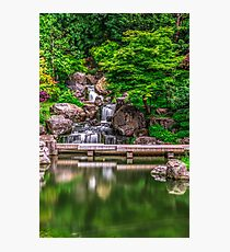 Kyoto Gardens London Photographic Print