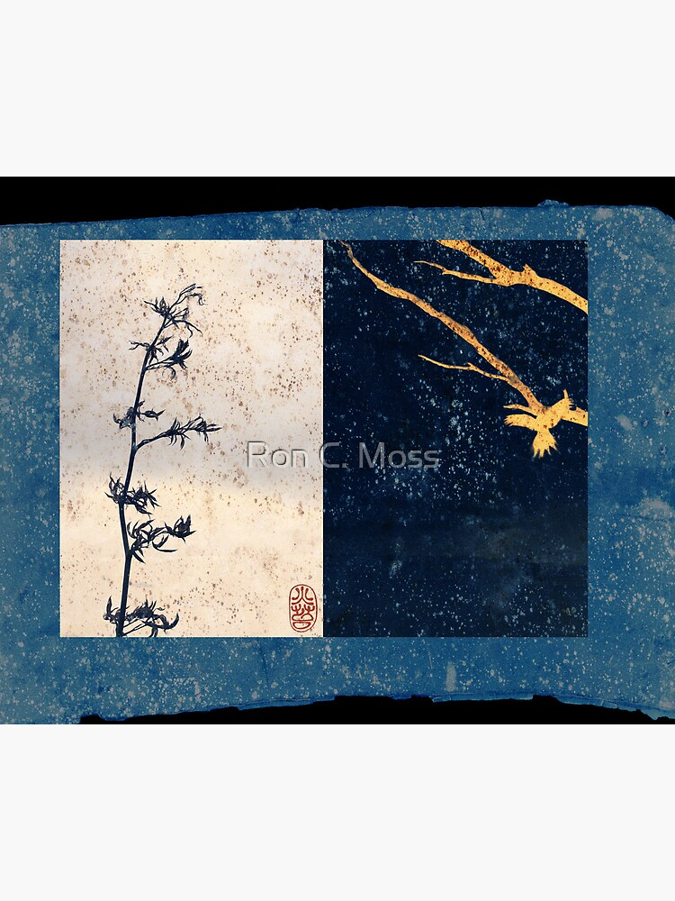 Two Prints by ronmoss