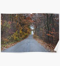 Scenic Drive in the Country Poster