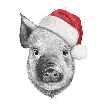 Christmas pig by kodamorkovkart