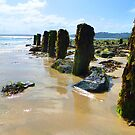 St Ives Bay, Cornwall At Low Tide by mcworldent