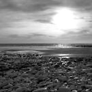 Dane's Dyke, Yorkshire Coast, England by mcworldent