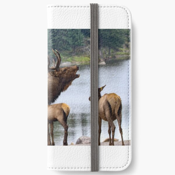 Elk Family iPhone Wallet