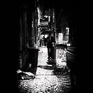 Nightwalk by SylvieBendel