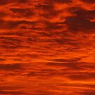 Fire in the Sky! by Vonnie Murfin