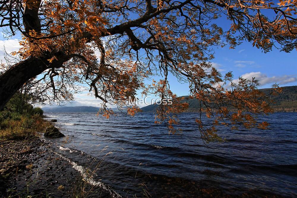 Loch Ness, Scotland by Martina Cross