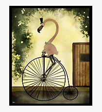 Penny Farthing Flamingo Photographic Print