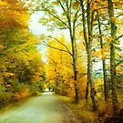 Land of the Seasons by John Rivera