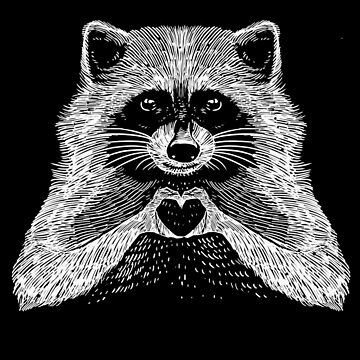 Love Raccoon by barmalisiRTB