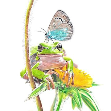 Frog & Butterfly drawing by Nasir-Nadzir