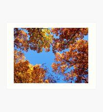 Autumn Towers Art Print