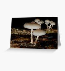 funghi Greeting Card