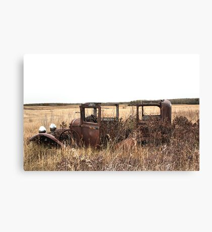 Unlimited Head Room Canvas Print