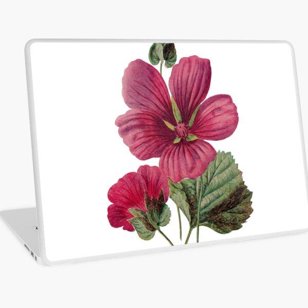 Crimson Mallow Print, Original Flower Print, Botanical Antique, Antique prints, Old print, Crimson Mallow Wall art, Crimson Mallow Flower, Botanical Prints Laptop Skin