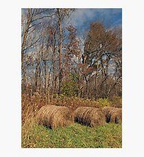 Hay Bales 1 Photographic Print