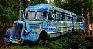 Woo Hoo the Magic Bus by Bob Moore