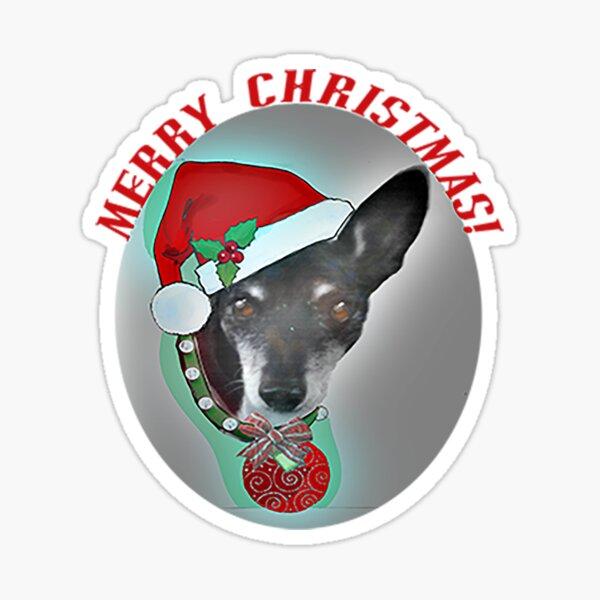 Merry Christmas Rat Terrier Sticker