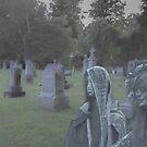 Cemetery Appearance by barkeypf