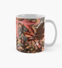 Rosier sauvage en automne 2 Mug classique