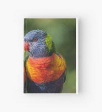 Rainbow Lorikeets Hardcover Journal
