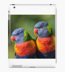Rainbow Lorikeets iPad Case/Skin