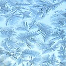 Frosty Patterns by MaeBelle