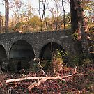 Cuivre River State Park Stone Bridge by Sherry  Graddy