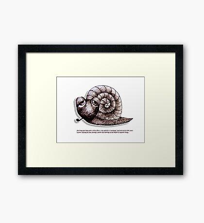 Little Profiles Chilled Snail Framed Print