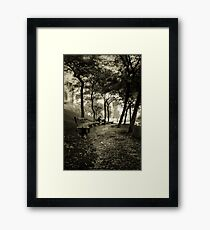 Afternoon in the Park Framed Print