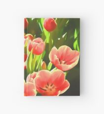 Tulips  Hardcover Journal