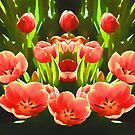 Tulips  by Ray Warren