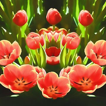 Tulips  by RayW